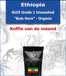 "Ethiopia - Guji Unwashed - ""Bule Hora"" Organic"