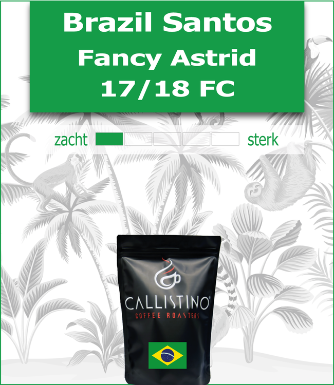 Brazil Santos Fancy Astrid NY 2 17/18 FC
