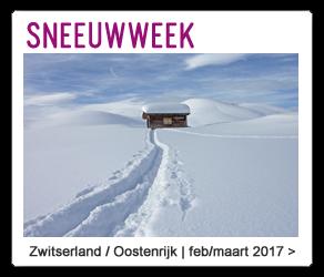 Avontuurlijke trektocht door de sneeuw met AltijdSporten.nl | Shop nu op AltijdSporten.nl