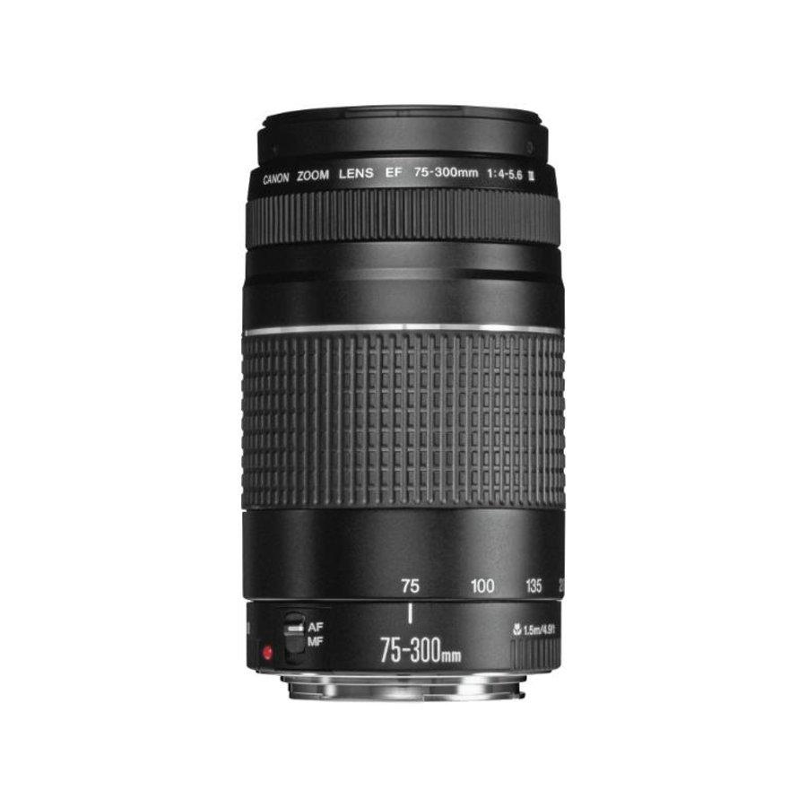 Canon EF 75-300mm f/4-5.6 III zoomobjectief-2