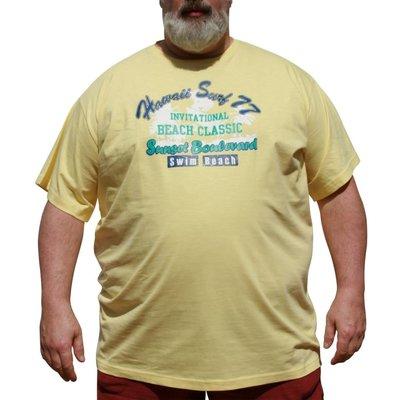 DAGIO 11702 Yellow T-shirt