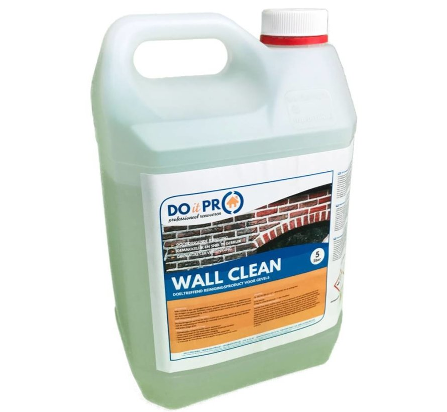 WALL CLEAN (5L)
