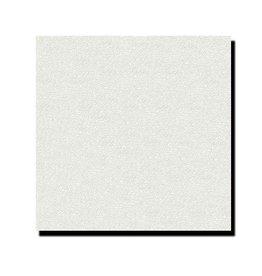Agnes® Agnes® plafondplaten wit structuur 1200 x 600 x 12 mm (4 stuks)