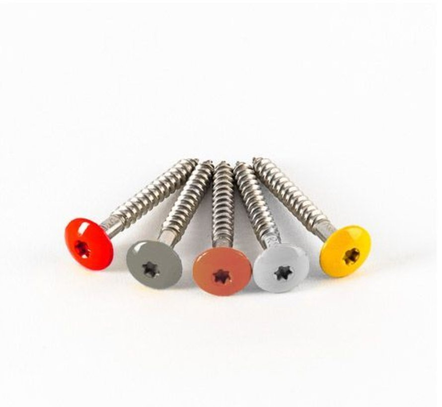 Schroeven RVS 4.8 x 38 mm met bit voor Trespa® (100 stuks)