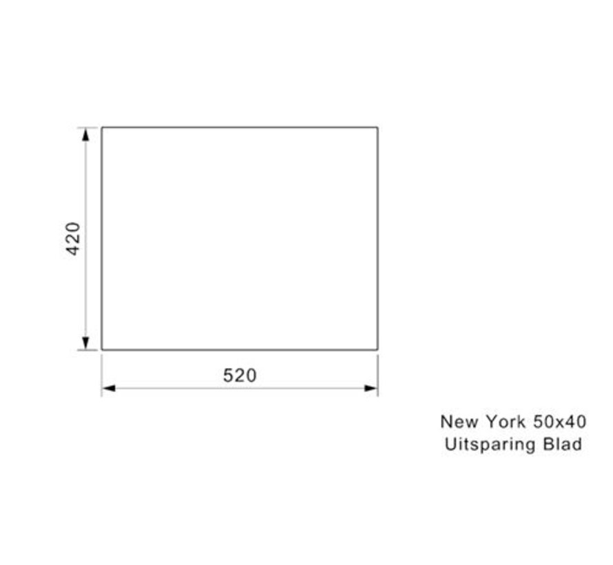 Reginox spoelbak New York RVS 50x40 R27646