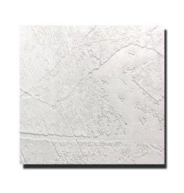 Agnes® Agnes® plafondplaten pleisterwerk 1200 x 600 x 12 mm (4 stuks)