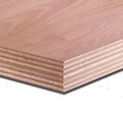 Okoume multiplex deurplaat 40 mm blank (overige maten)