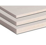 Populieren blank 310x153cm