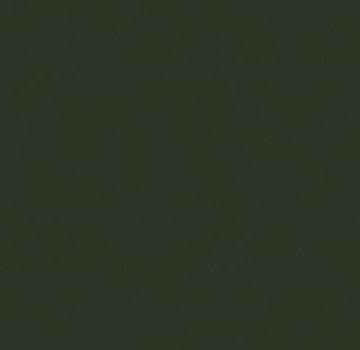 Trespa® Izeon® RAL 6009 6mm 3050 x 1530mm