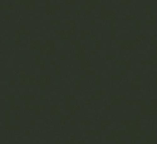 Trespa® Izeon® RAL 6009 donker groen 6mm 3050 x 1530mm