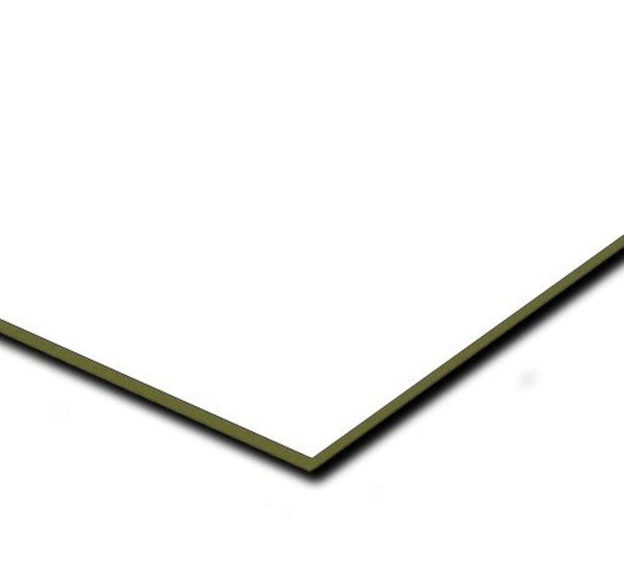 Boeidelen Rockpanel RAL 9010 - 305cm lang
