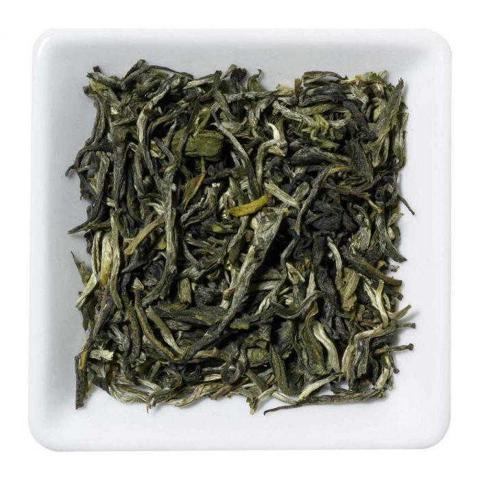 Camellia Discovery China Mao Feng Organic Tea