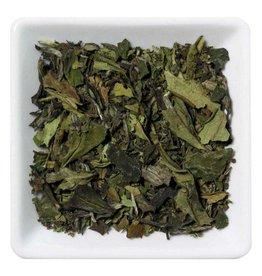Camellia Discovery China Pai Mu Tan  Organic Tea