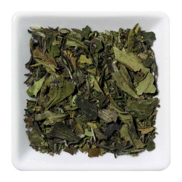 Camellia Discovery China Pai Mu Tan  Organic Tea