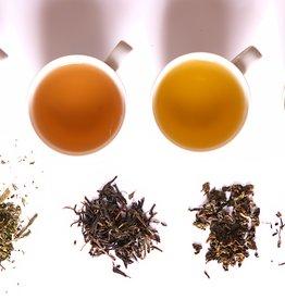 Camellia Discovery Tea Origin