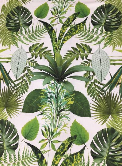 botanic garden canvas