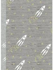 GLOW IN THE DARK jersey - raketten grijs