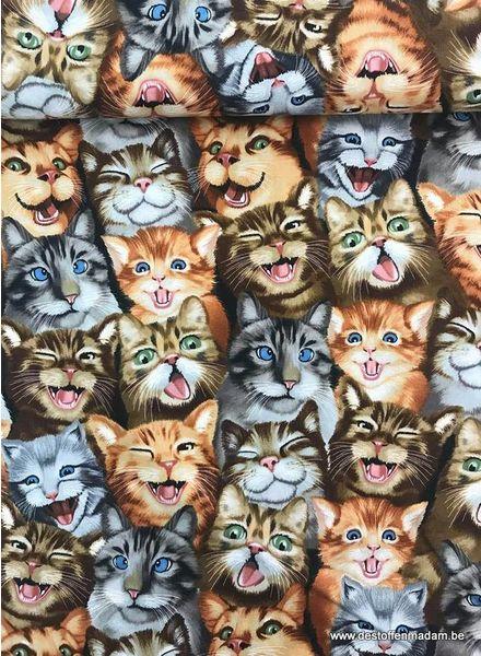 Timeless Treasures Fabrics selfie cats - katoen