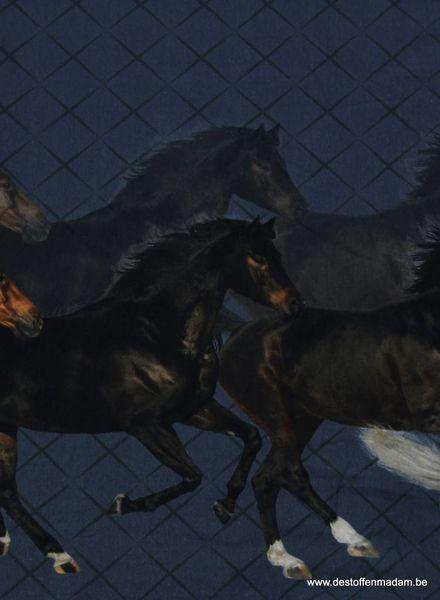 paarden border tricot