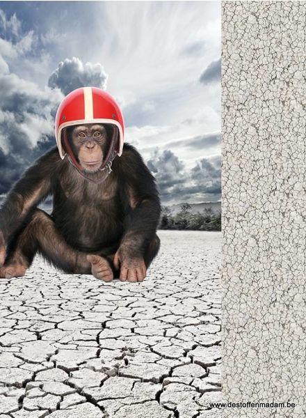 monkey panel - tricot
