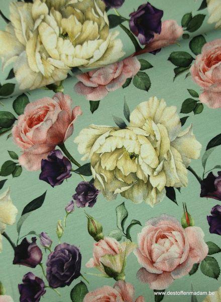 antique roses mint - jersey S
