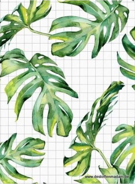 leafy grid french terry S