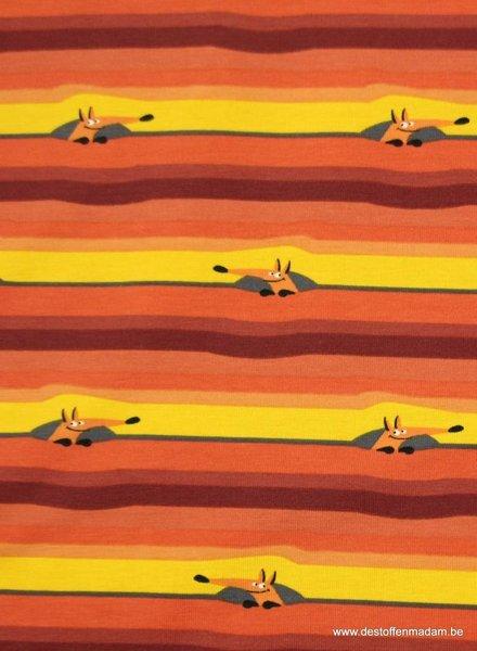 woody oranje - tricot