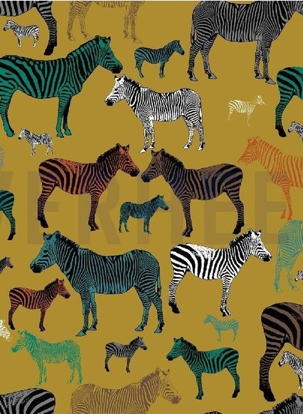 ocre zebra business - french terry