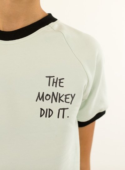 See You at Six Flex applicatie 'The Monkey did it'