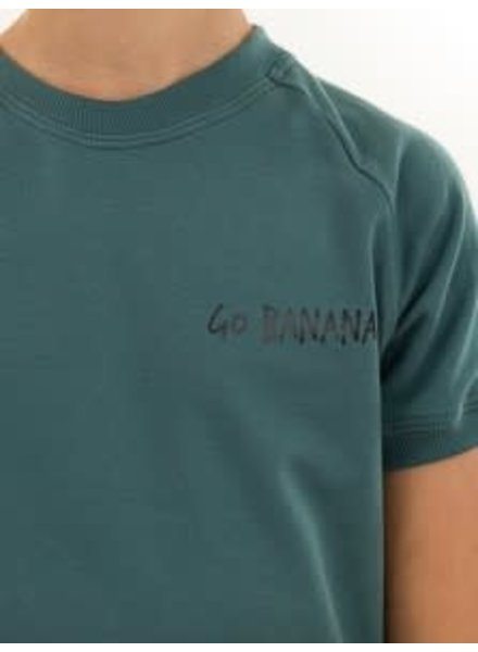 Flex applicatie 'Go Bananas'