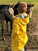 mint rain coat fabric PUL