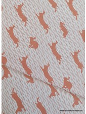 orange jumping rabbit canvas