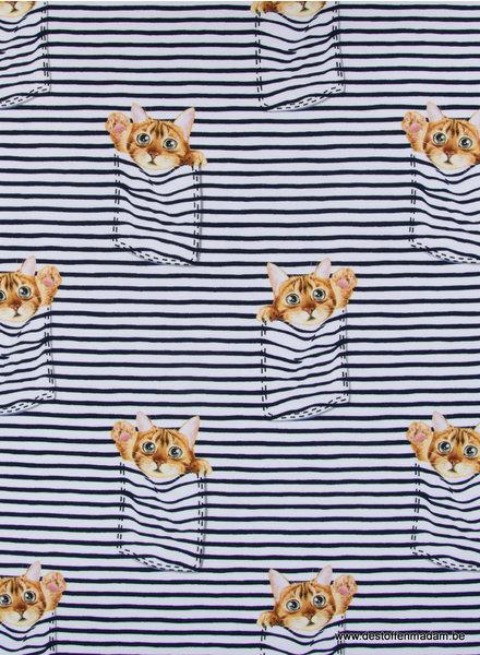 peekaboo kitten - french terry