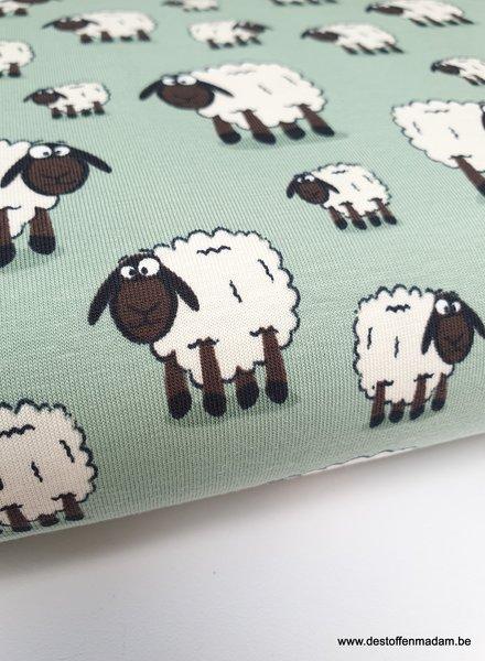 sheep mint - jersey