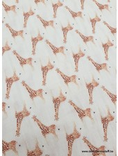 giraffe tetra