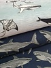 ocean adventures - tricot