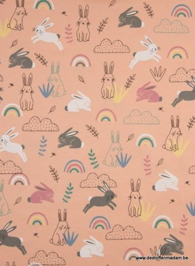 bunny's and rainbows jersey - salmon