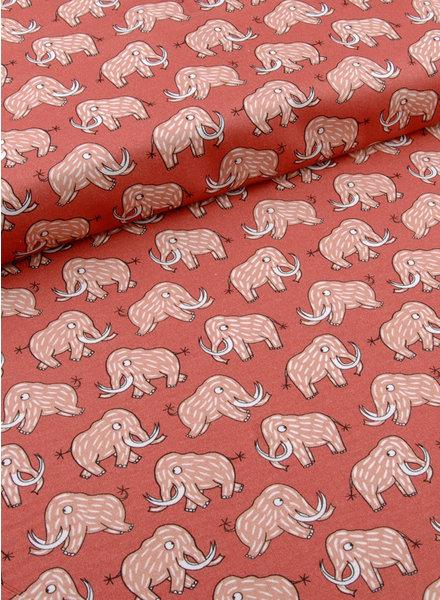 mammoth - cotton