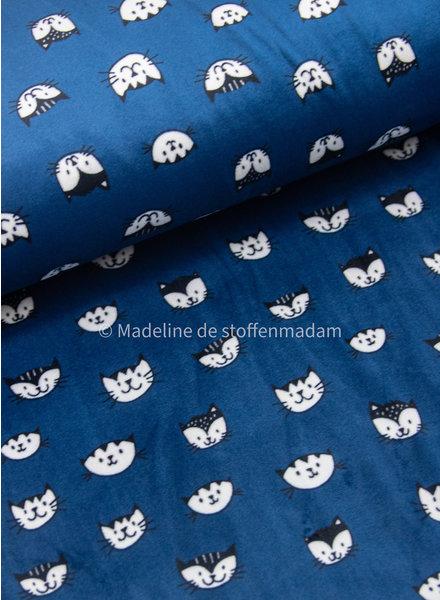 cats navy - nicky velours