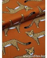 Cheetah - french terry - Eva Mouton