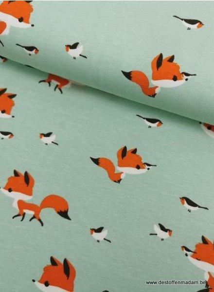 mint fox - jersey