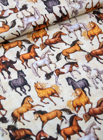 wild horses - cotton