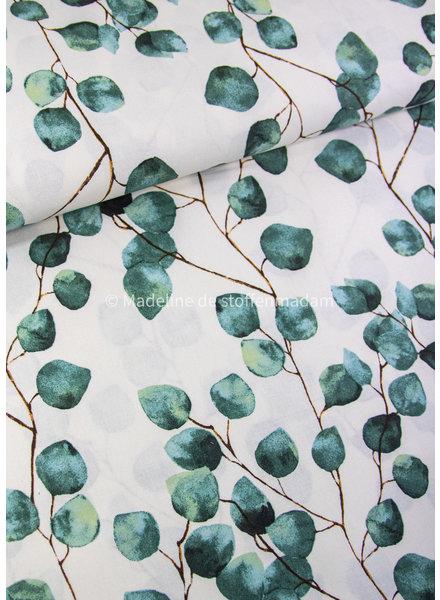eucalyptus bladeren - canvas