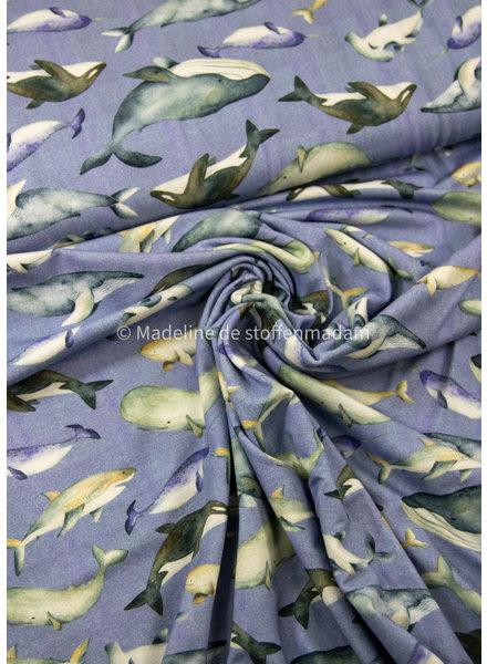 M lichtblauw deep blue kings - tricot