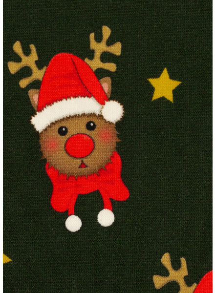 Swafing Rudolf green - Christmas - french terry