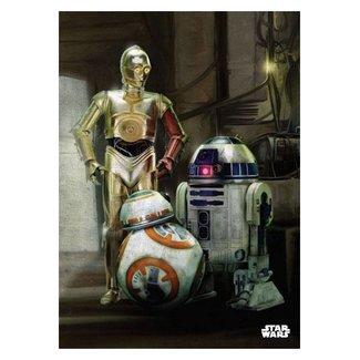 Star Wars Star Wars: Droiden Metall Poster