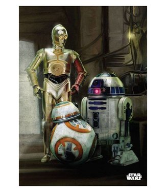Star Wars Star Wars: Droiden Metall Poster