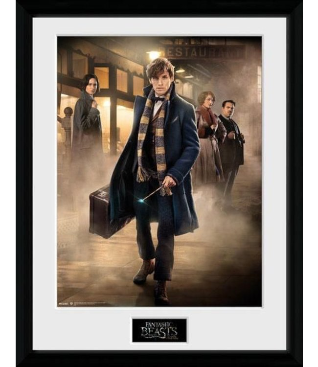 Fantastic Beasts Fantastic Beasts   New York Poster im Rahmen