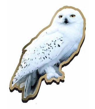 Half Moon Bay Harry Potter   Hedwig Ansteck-Pin