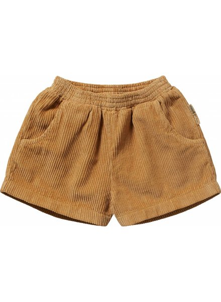 Maed For Mini Shorts Marakesh Monkey